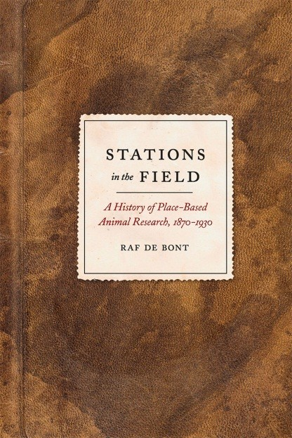 Stations in the Field Raf de Bont